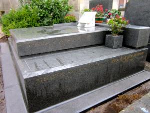 aleksandar petrovic grobnica
